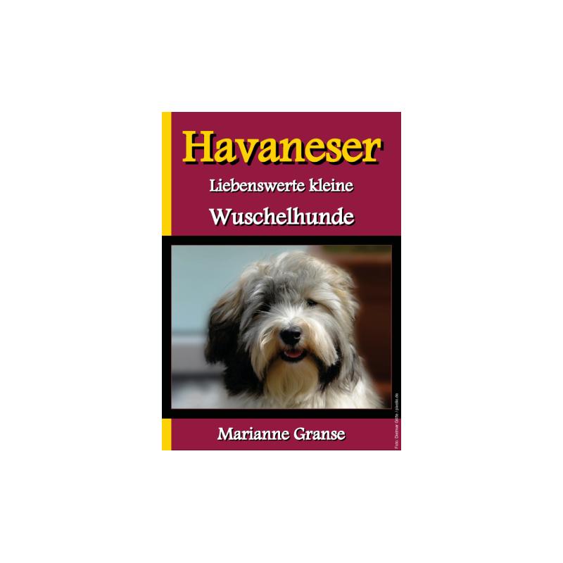 Havaneser - Liebenswerte kleine Wuschelhunde