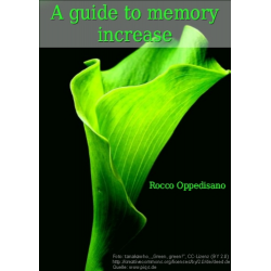 A Guide to Memory Increase